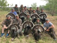 2019 Gould's Turkey | Mexico | 2 SPOTS AVAILABLE