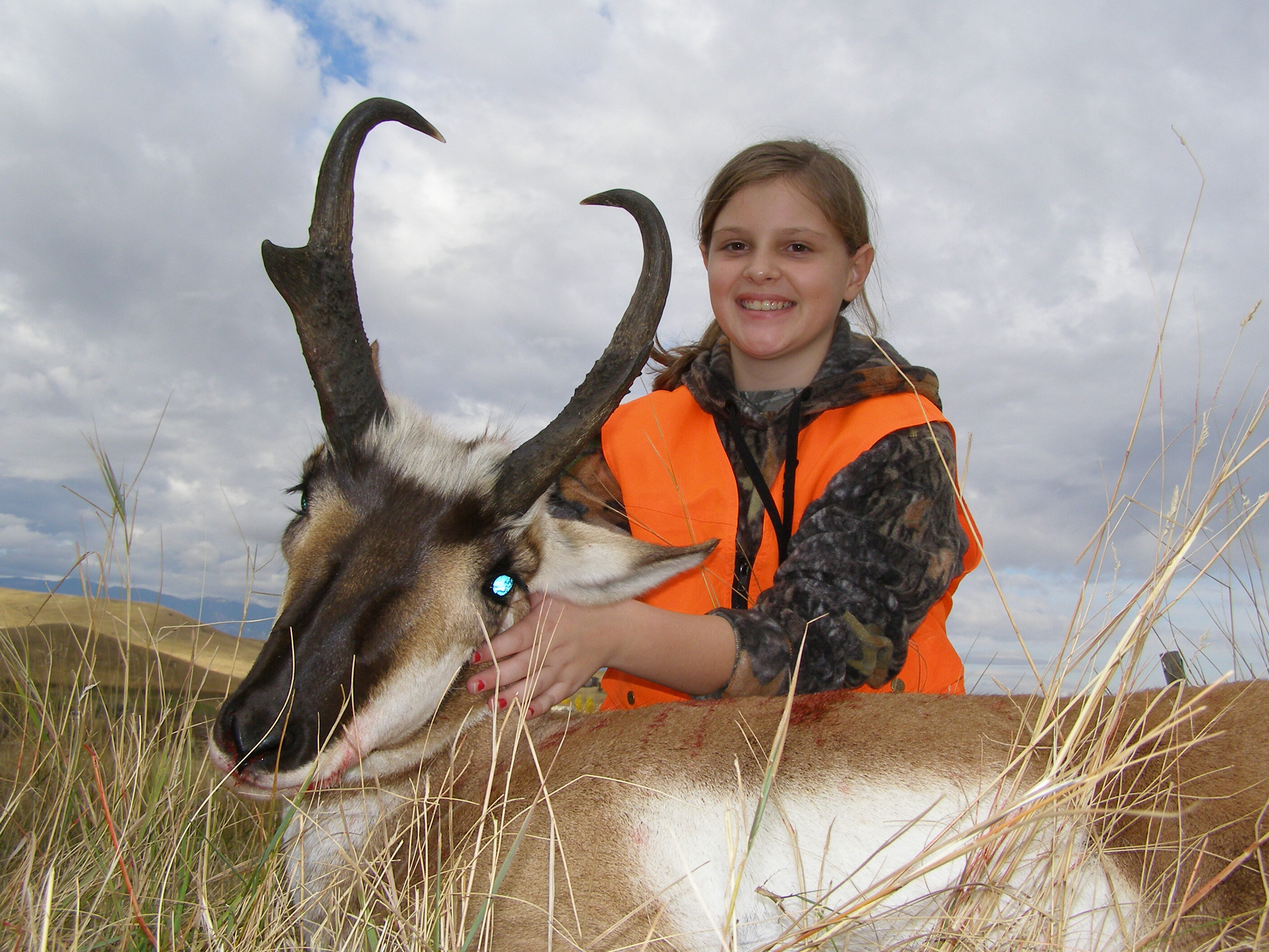 Wyoming Antelope