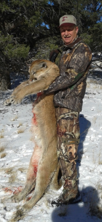 Arizona & New Mexico Mountain Lion