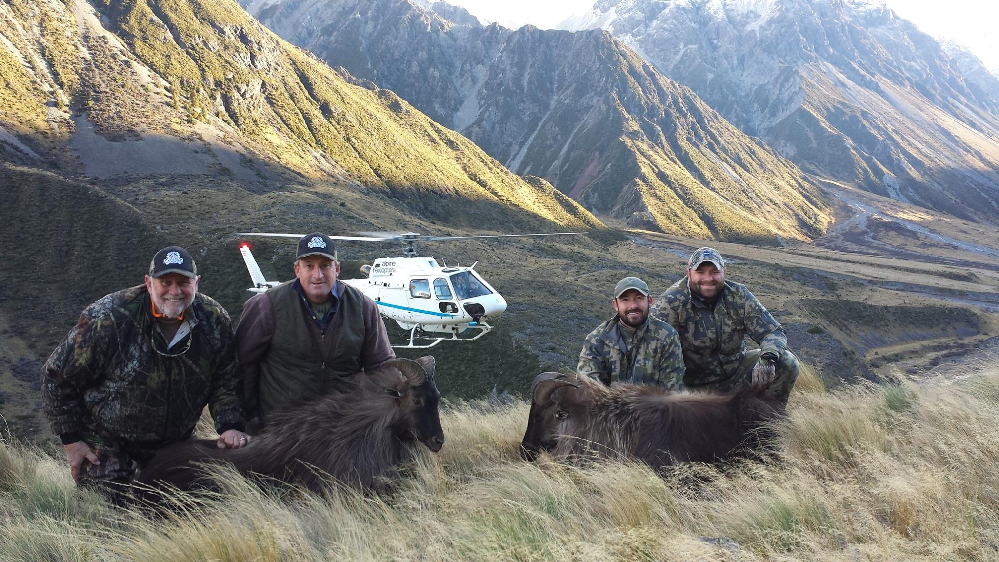 New Zealand | South Island | Stag, Tahr & Chamois